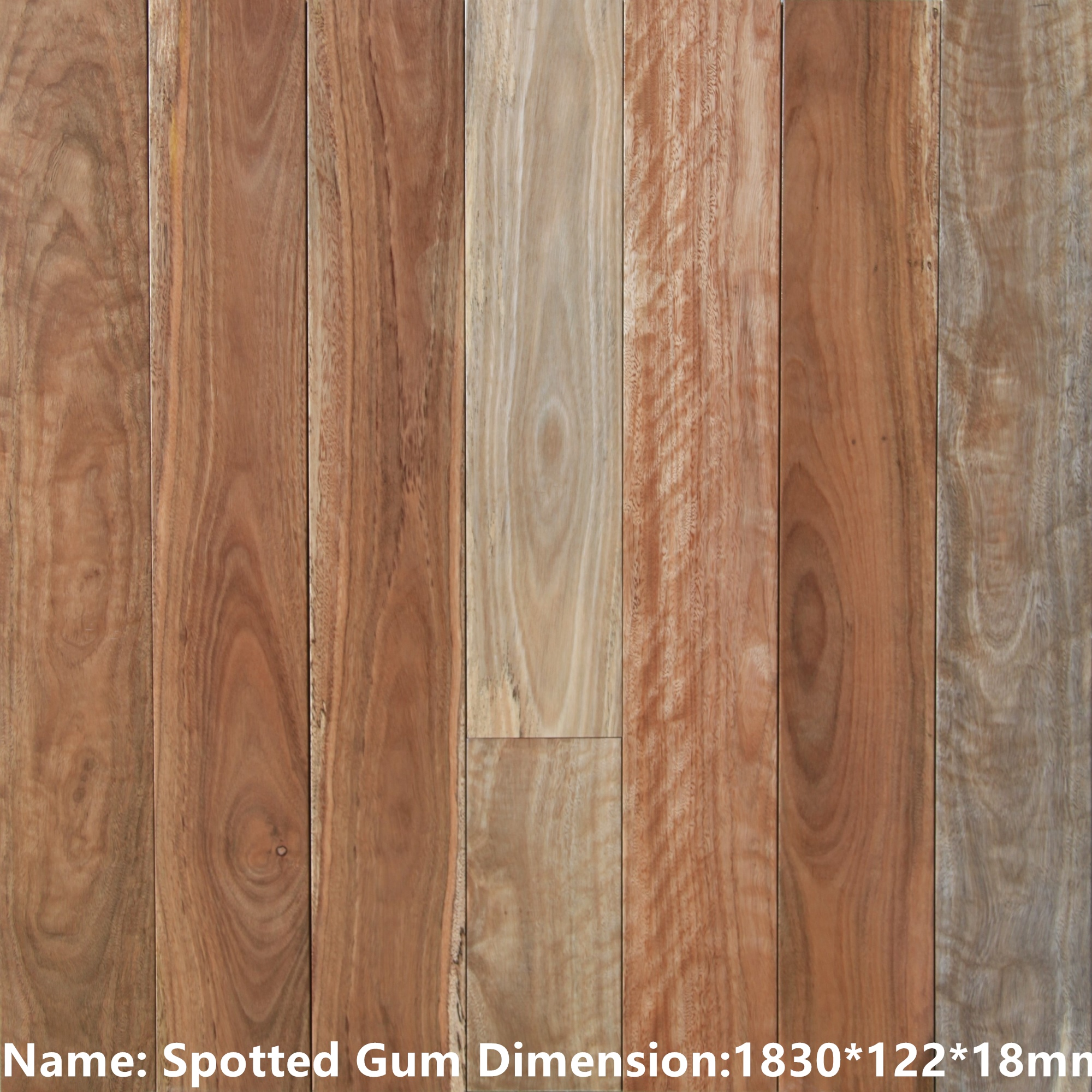 Spotted gum - Solid Timber