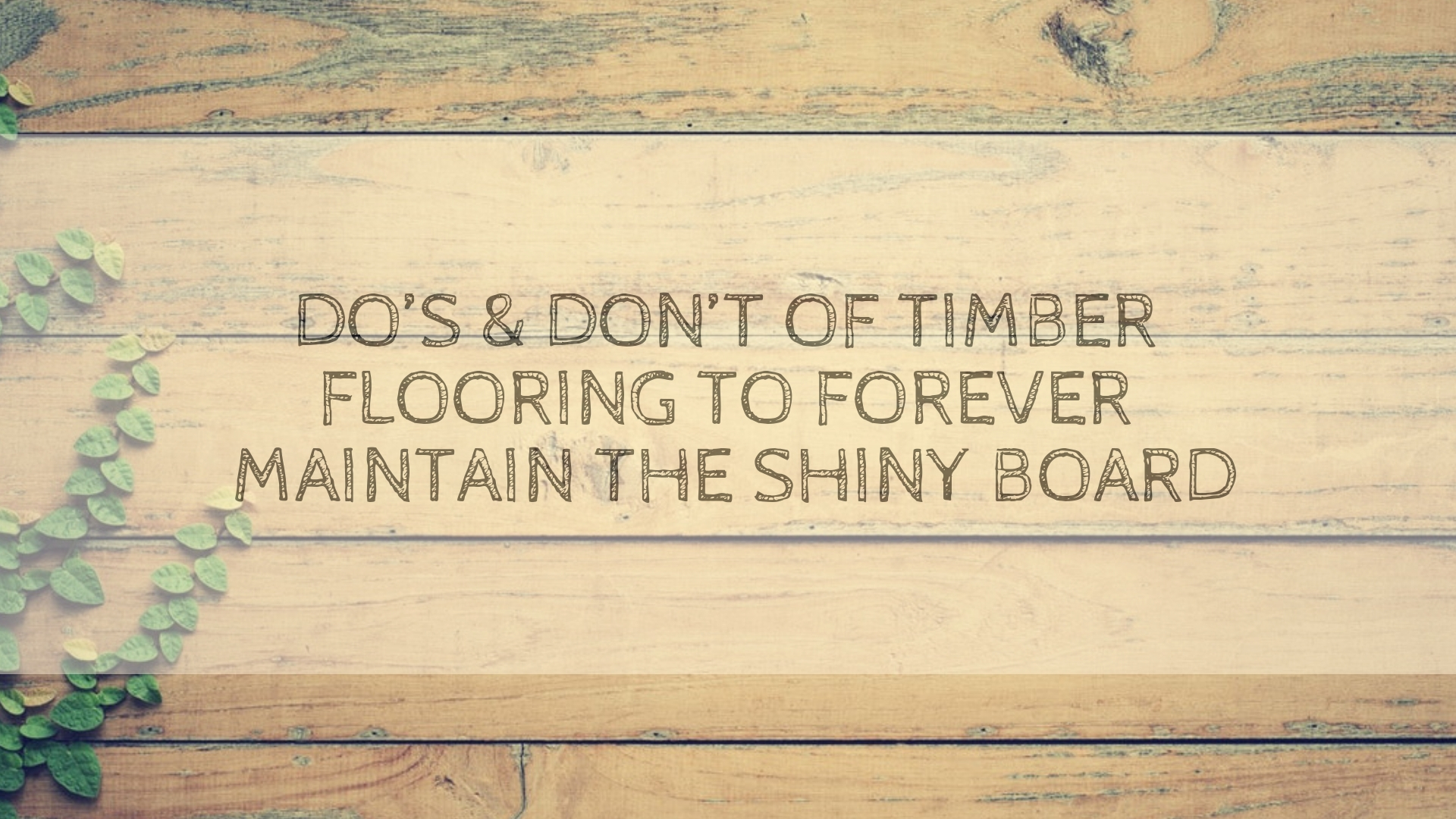 Maintain Timber Flooring